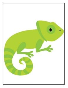 okul_öncesi_hayvanat_bahçesi_iguana