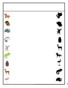 okul_öncesi_hayvanlar_gölge_eşleştirme