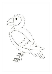 orman_hayvanları_çizgi_tamamlama_çalışmaları_kuş