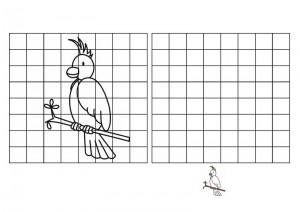 resmin_aynısını_çizme_kuş_türleri