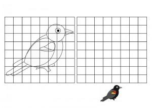resmin_aynısını_çizme_kuşlar