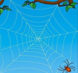 yazıya_hazırlık_örümcek