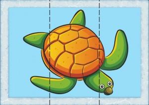 üç_parça_puzzle_kaplumbağa