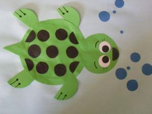daire_kağıtlardan_su_kaplumbağası