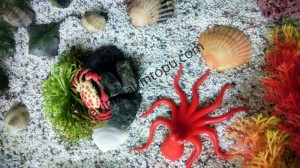 deniz_hayvanları_sanat_etkinlikleri