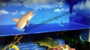 eğlenceli_okul_öncesi_okyanus_etkinlikleri