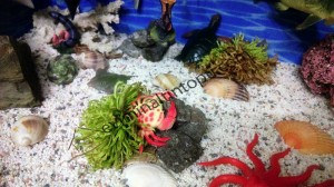 okul_öncesi_okyanus_temalı_etkinlikler