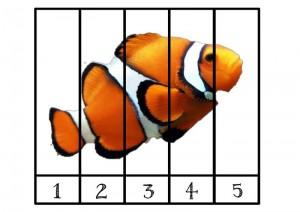 okyanus_hayvanları_puzzle_balık