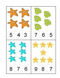okyanus_hayvanları_sayı_örnekleri