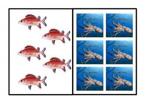 okyanus_hayvanları_sayı_güzel