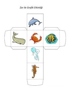 okyanus_hayvanları_zar_ile_