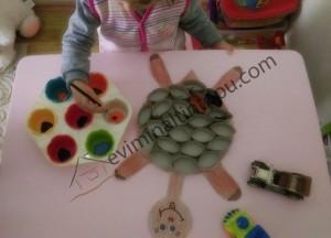 tortoise_activities_for_preschoolers