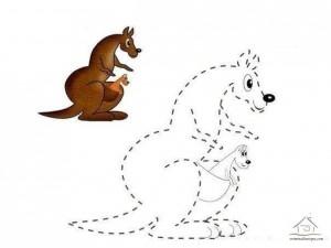 çizgi tamamlama ve boyama kanguru