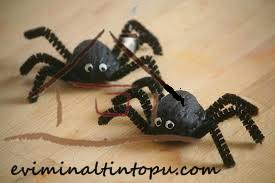 cevizden örümcek yapımı