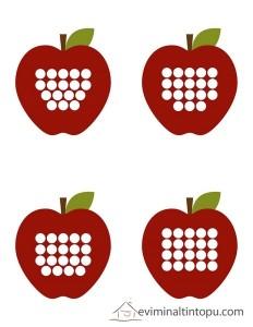 elma ile sayıları öğreniyorum