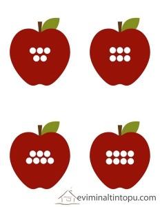 elmalar ile tane hesabı etkinliği