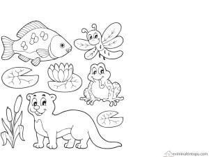 göldeki hayvanlar boyaması