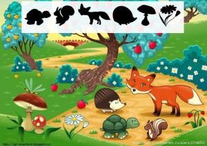 hayvanlar çoklu gölge eşleştirme örnekleri