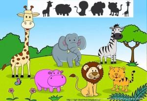 hayvanlar çoklu gölge eşleştirme aktiviteleri