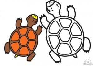 kaplumbağa boyama çalışması