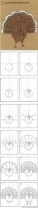 kolay tavus kuşu çizimi