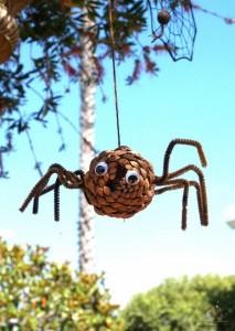 kozalaktan örümcek (2)