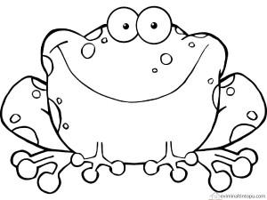kurbağa boyama okul öncesi