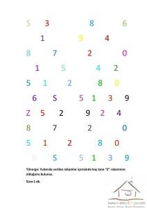 1.sınıf dikkat etkinlikleri (11)