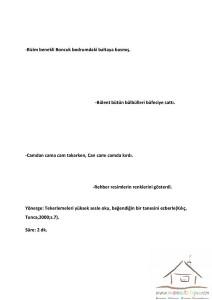 2.sınıf dikkat etkinlikleri (26)