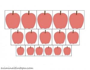 elma boyut sıralama çalışması (1)