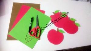 elma kurdu ile eğlenceli matematik etkinliği (11)