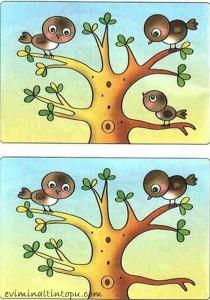 iki resim arasındaki farkı bulma etkinlik sayfaları (1)
