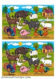 iki resim arasındaki farkı bulma etkinlik sayfaları (11)