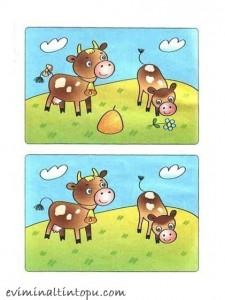 iki resim arasındaki farkı bulma etkinlik sayfaları (12)