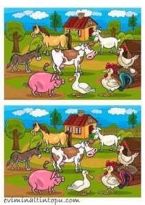 iki resim arasındaki farkı bulma etkinlik sayfaları (15)