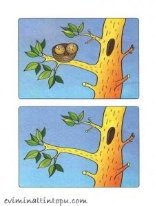 iki resim arasındaki farkı bulma etkinlik sayfaları (2)