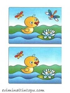 iki resim arasındaki farkı bulma etkinlik sayfaları (21)