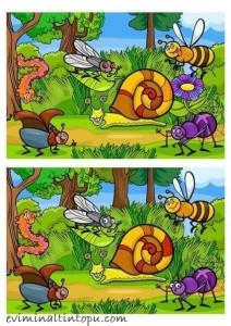 iki resim arasındaki farkı bulma etkinlik sayfaları (8)