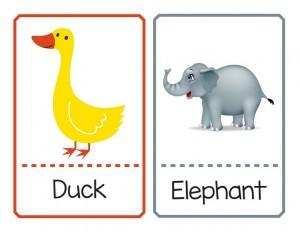 ingilizce hayvan ve isim eşleştirme kartları