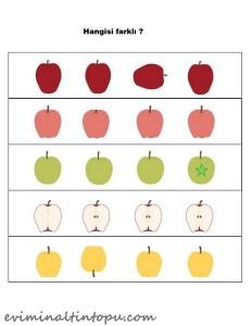 okul öncesi elma hangisi farklı çalışmaları