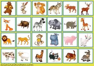 okul öncesi nesne bulma dikkat oyunları (7)