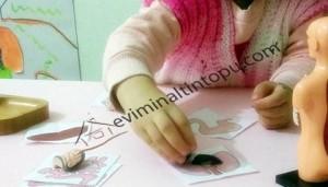 okul öncesi organlarımız eşleştirme kartları (5)