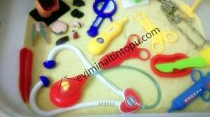 organlar duyusal havuzu (6)