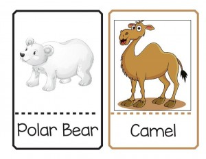 renkli sevimli hayvan eşleştirme kartları