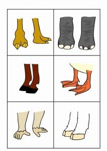 hayvanlar gövde ayak eşleştirme etkinliği (3)