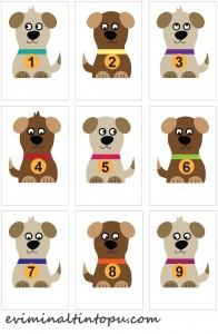 köpek kemik eşleştirme sayı etkinliği