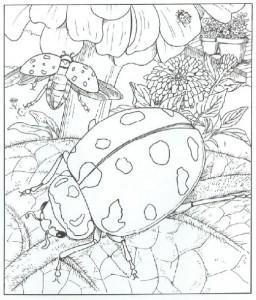 uğur böceği mandala çalışmaları (9)