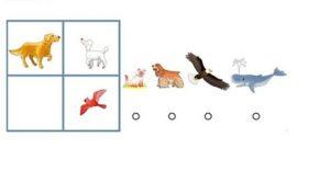 çocuklarda zeka geliştiren sorular (4)