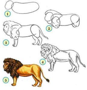 adım adım aslan çizimi