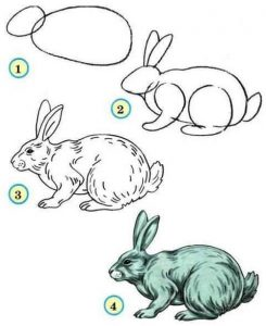 adım adım tavşan çizimi 2